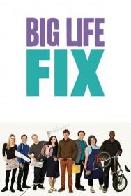 The Big Life Fix